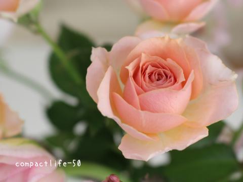 室内に花を飾る